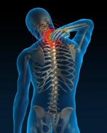 theawakeningsproject chiropractic professionals